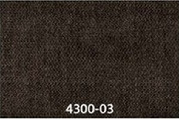 4300-03