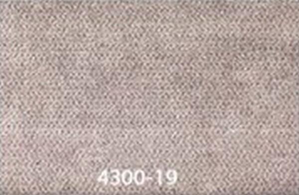 4300-19