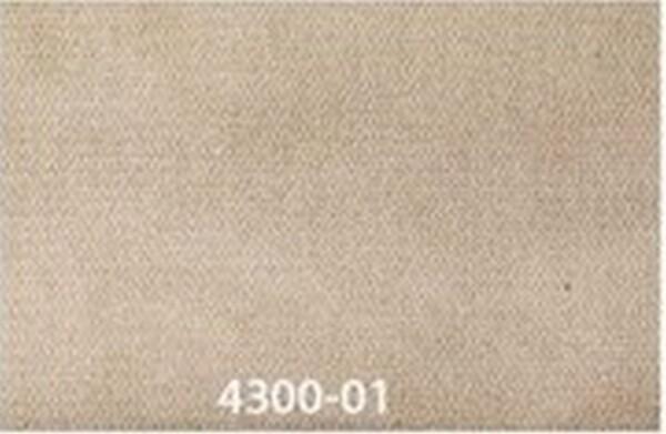 4300-01