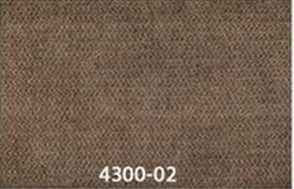 4300-02