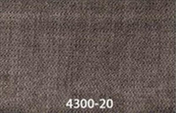 4300-20