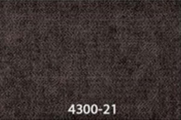 4300-21